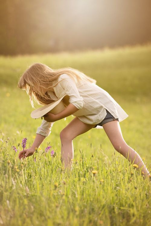 pick flowers girl person