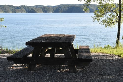 picnic picnic table outdoor lunch
