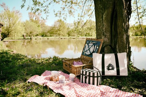 picnic  outing  nature