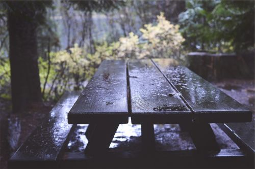 picnic table wood raining