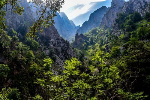 picos de europa asturias tourism