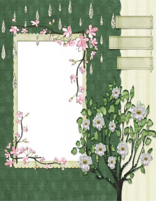 Picture Frame Collection 12