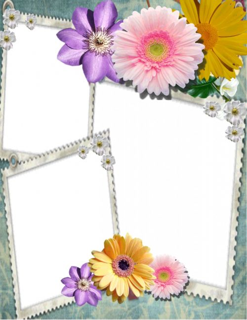 Picture Frame Collection 14