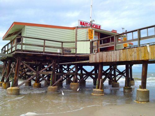 pier fishing bait