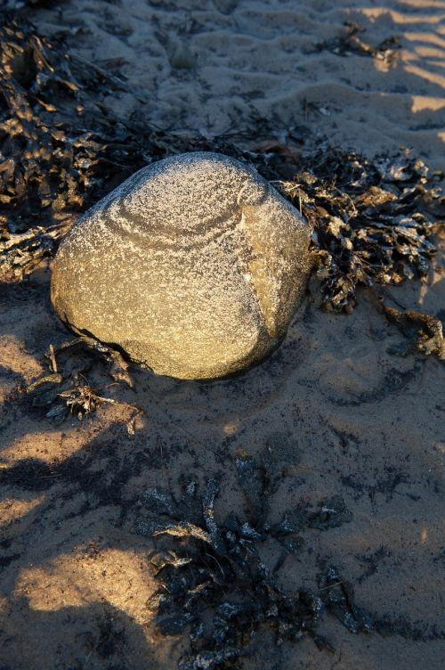 pierre sun water
