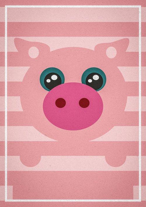 pig  animal  nature