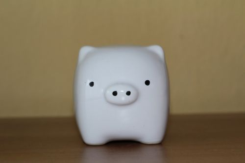 piggy piggy bank white