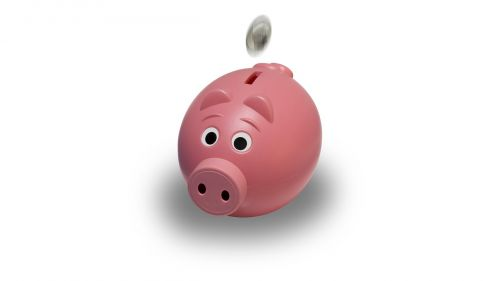 piggy bank coin pink