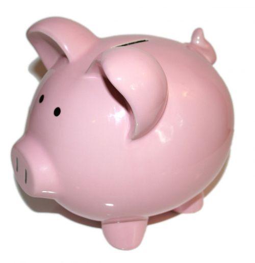 piggy bank bank money
