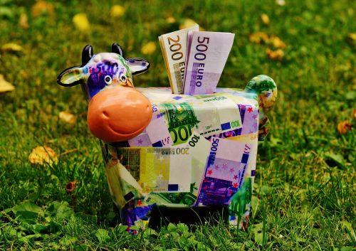 piggy bank money cow