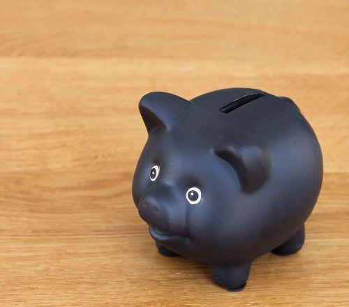 piggy bank money box pig