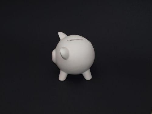 piggy bank pig save money