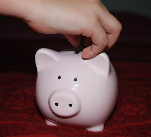 piggy bank pig savings