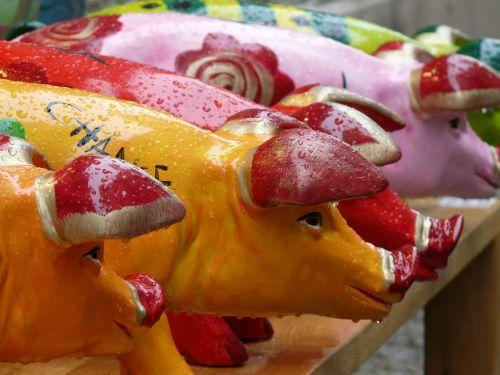 kiaulės,kiaulių figūrėlės,skaičiai,spalvinga,gaudy,juokinga,kiaulės ausis