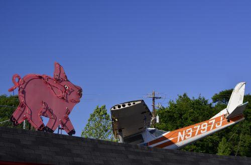 pigs planes airplane