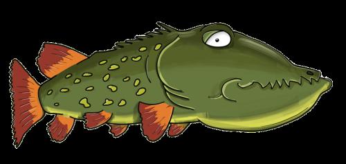 pike fish predator
