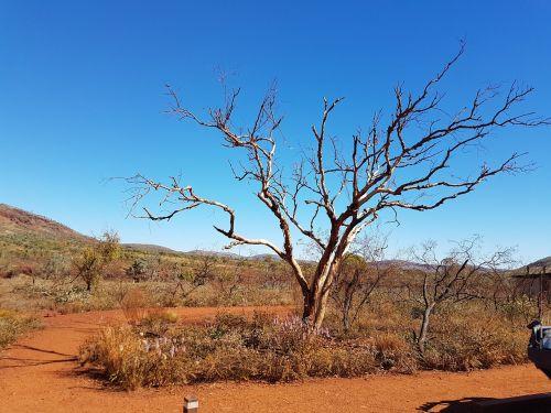 pilbara western australia australia
