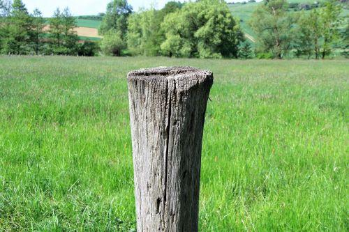 pile wood pile wood
