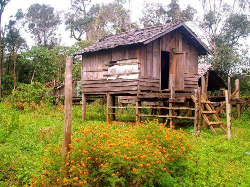 pile dwelling crannog stilt houses