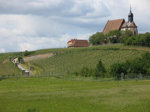 pilgrimage church maria in the vineyard volkach