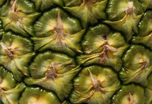 pineapple fruit close up