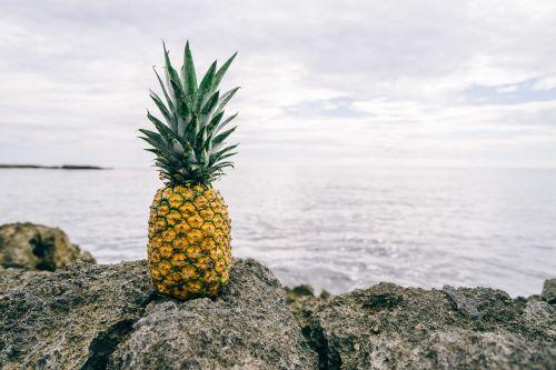 pineapple ocean view freshness