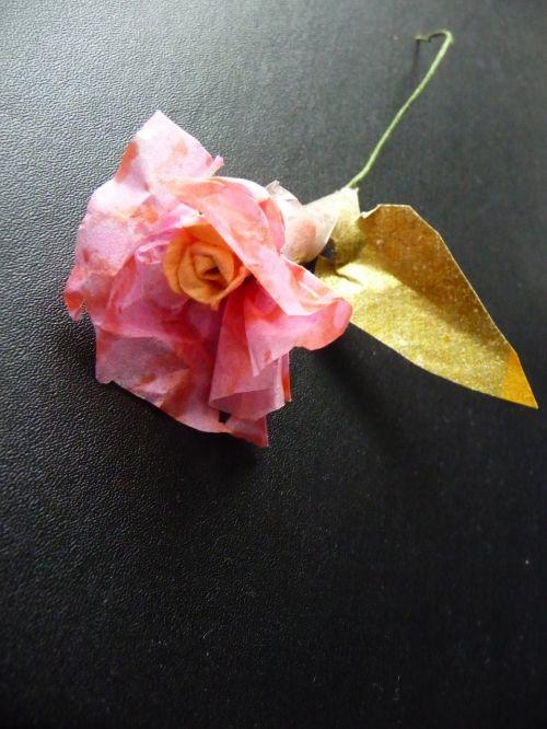 pink paper flower black