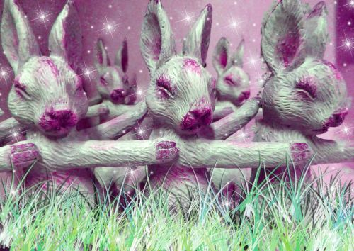 Pink Bunnies In The Grass