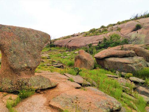pink granite rock formation wild flowers