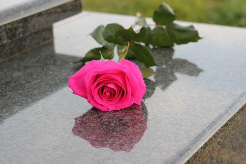 pink rose grey marble gravestone