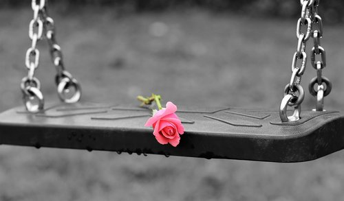 pink rose on empty swing  stop children suicide  empty playground