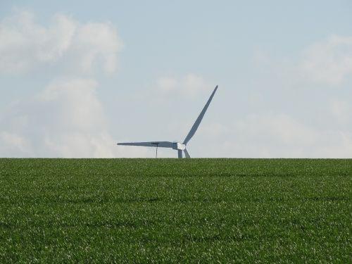 pinwheel field green