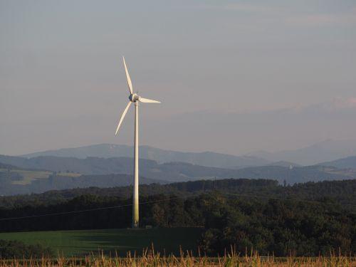 pinwheel landscape current
