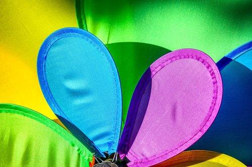 pinwheel  colorful  wing