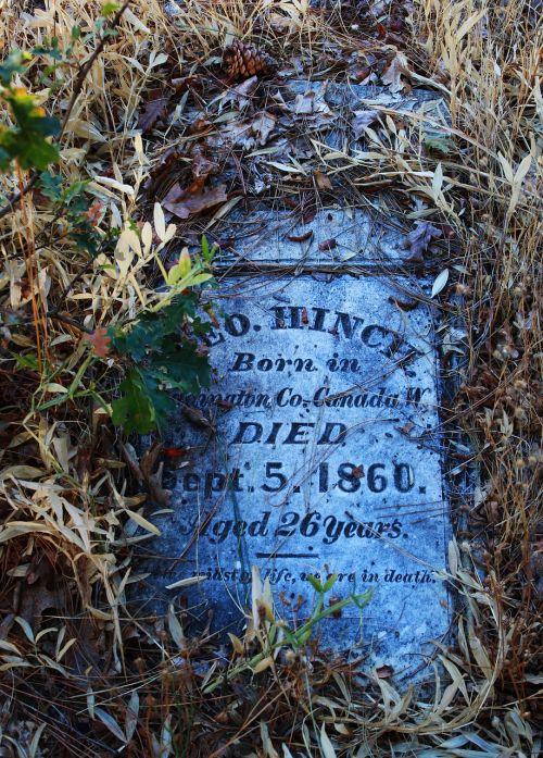 pioneer died dead