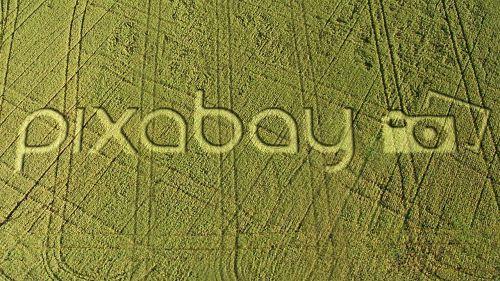 pixabay field crop circle
