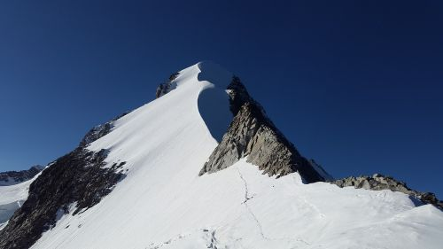 piz bernina alpine biancograt
