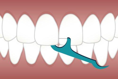 plackers  dental  flossers