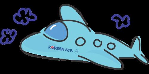 plane korean air travel