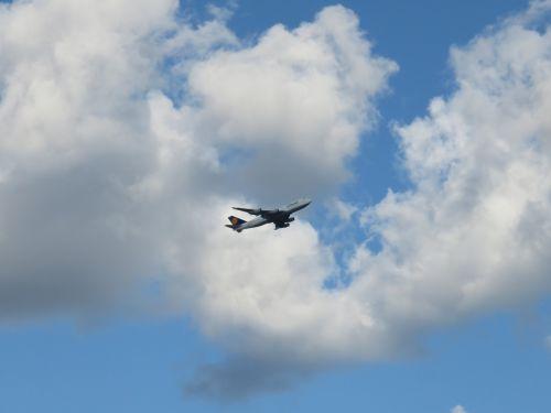 plane airplane flight