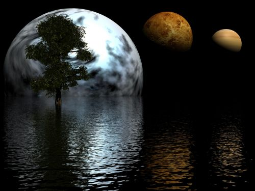 planets tree water