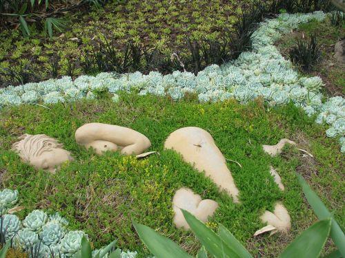 plant green ingrowing