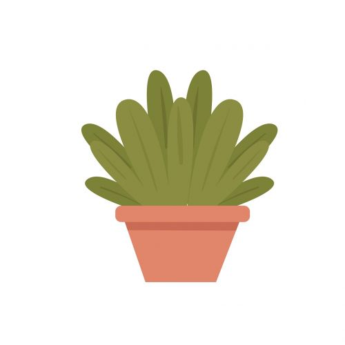 plant potted trees clipart