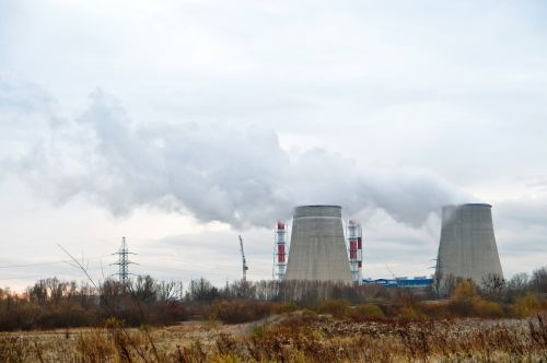 plant power smoke