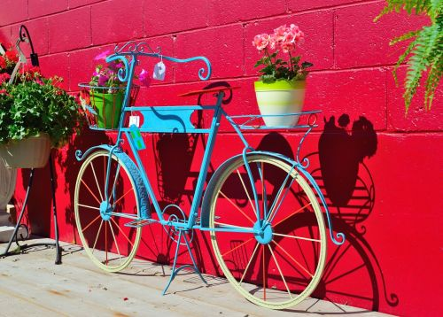 plant holder bicycle flowers