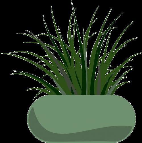 planter grass garden