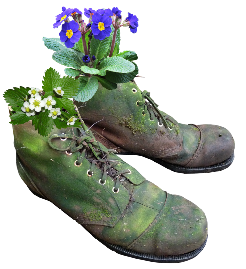 planter flowers old boots