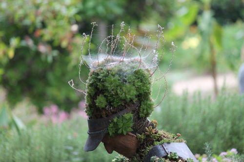plants sculpture nature