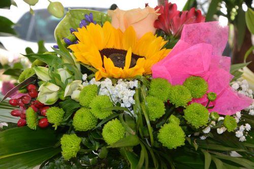 plants flowers floral composition