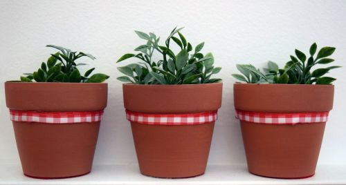 plants synthetic stoneware red ribbon